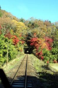 【車窓から見た沿線風景部門】 紅葉真っ盛りのトンネル入り口